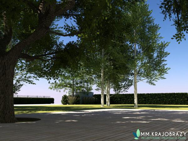 Projekt terenu zieleni przy kawiarni 3