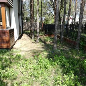 Leśny ogród przed realizacją