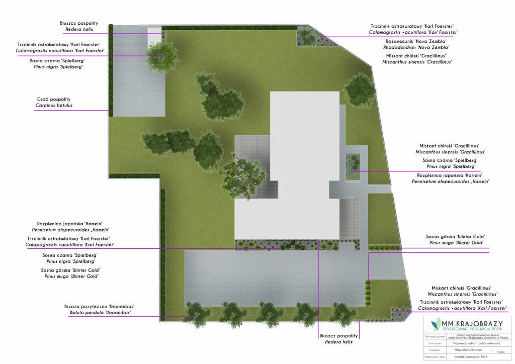 Projekt zieleni przy obiekcie użyteczności publicznej